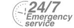 24/7 Emergency Service Pest Control in South Ockendon, RM15. Call Now! 020 8166 9746